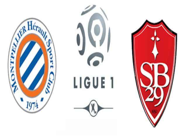 Soi kèo nhà cái bóng đá trận Montpellier vs Brest 02:00 – 17/05/2021